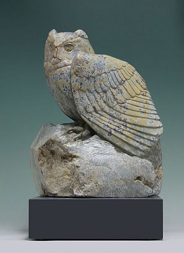 WATCHFUL WAITING - Owl by Clarence Cameron