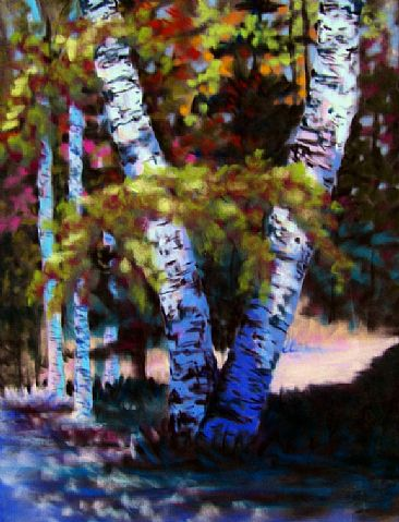 Ancient Birch - Birch Trees  Landscape by Betsy Popp