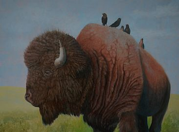 Bison Highway - Bison with cowbirds by Betsy Popp