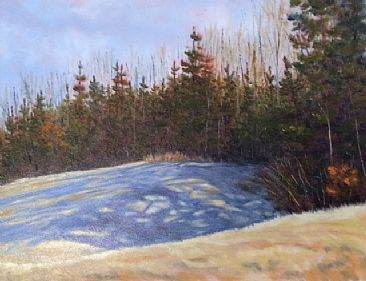 Casting Shadows - Landscape by Betsy Popp