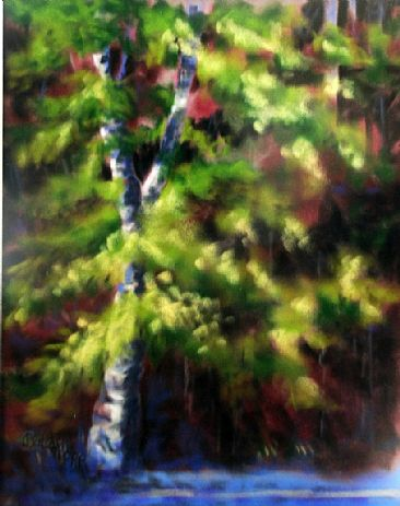 Birch Trees Painting Art By Betsy Popp