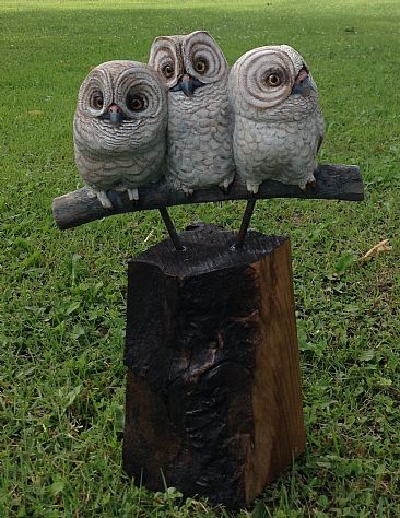 Make Some Room - SOLD - Immature owls by Betsy Popp