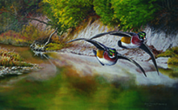 Wood Ducks - Painting - Nature Art by Christopher WaldenWood Ducks Flying