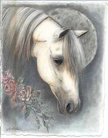 morwell daydream (commission) - horse, horses, ponies by Susie Gordon