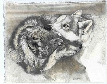 commission wolves - wolf, wolves by Susie Gordon