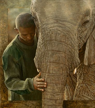 - African Elephant orphan,  by Val Warner