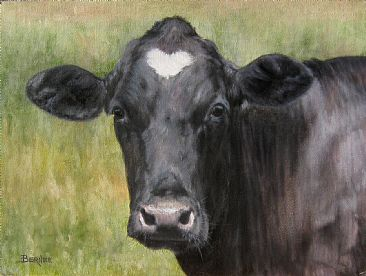 Sweetheart - Holstein portrait by Sally Berner