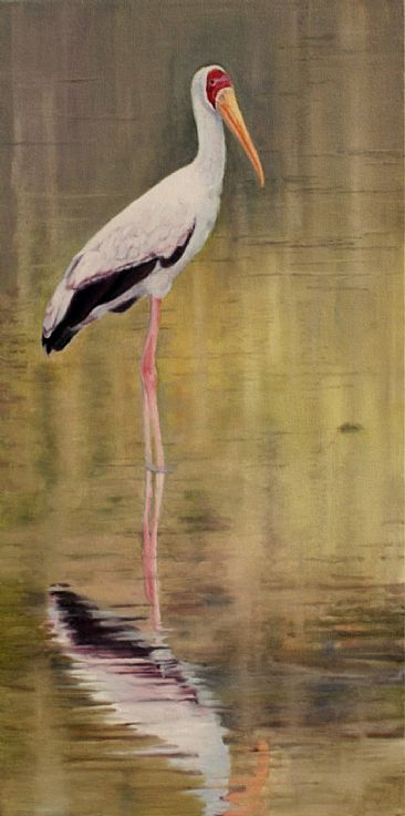 Reflection - Yellow-billed Stork - Yellow-billed Stork by Sally Berner