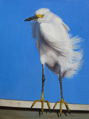 Blowin' in the Wind - Snowy Egret  - Paint the Parks 2011 Top 100 Exhibition by Sally Berner