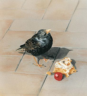 Ma Cherie - Starling with Belgian bun by Lauren Bissell
