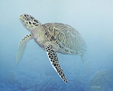 Hawksbill turtle painting art by curtis atwater for Turtle fish paint