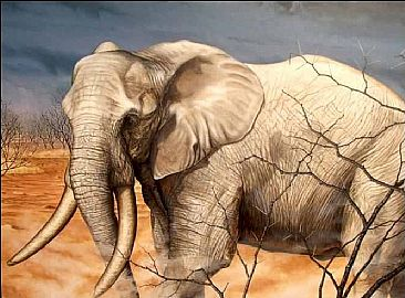 The Gathering Storm - African Elephant by Robert Wand