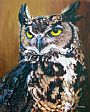 Horned Owl - Owl by Tom Altenburg&nbsp(2)