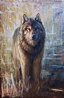 Spirit of the wolf - Wildlife by Virginie Baude&nbsp(2)