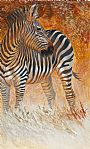 Serengeti Sunset - Plains Zebra by Kathryn Weisberg (2)