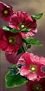Humming Hollyhocks - Humming Bird by Patti Wilson&nbsp(2)