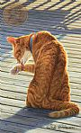 Purfection (Sold) - Domestic Feline by Linda Rossin (2)