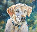 Pet portraits - Nature Art by Gregory Wellman