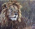 Africa - Nature Art by Michelle McCune