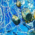 WATERSCAPES - Nature Art by Margarethe Vanderpas