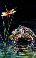 Reptiles, Fish, Insects, Etc. - Nature Art by Linda Parkinson