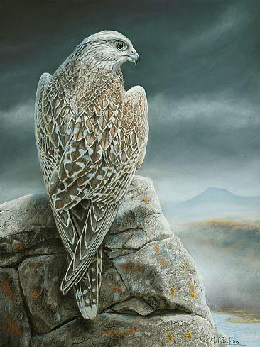 http://www.natureartists.com/art/resized/1136_Vantage_Point_gyr_SMALL2.jpg